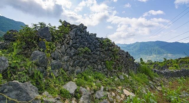 Thanh-Vang-Long-7040-1624437040.jpg