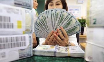 Thấy gì từ việc Ngân hàng Nhà nước giảm mua vào ngoại tệ?