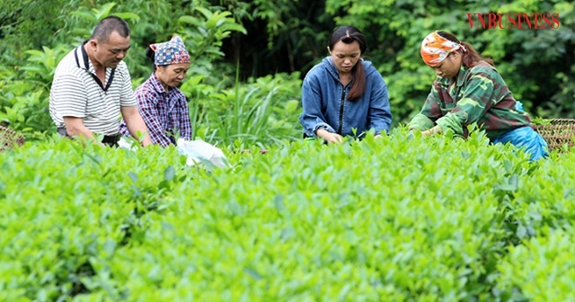 Bai-3-HTX-dong-bao-nguoi-Mong-2574-2384-