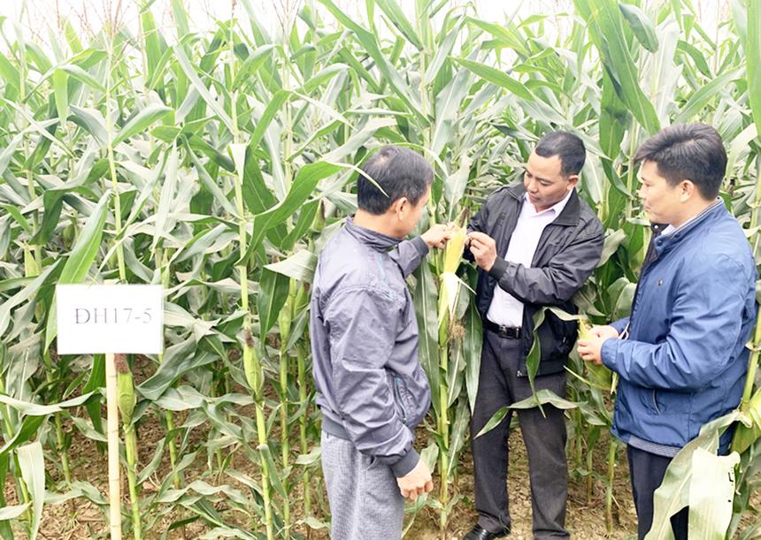 Tuyen-Quang-1-3613-1625457488.jpg