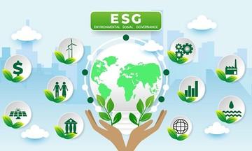 Các quỹ tiên phong tìm kiếm cơ hội đầu tư ESG tại Việt Nam