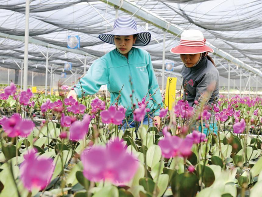 Ninh-So-n-3b-5299-1625659748.jpg