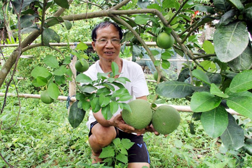 Huong-Son-1-2233-1626158866.jpg