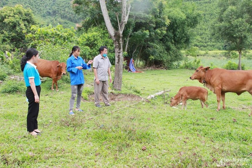 Lam-giau-o-ban-cao-veu-7203-1626162002.j