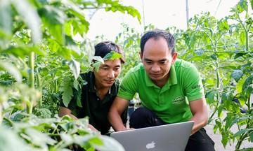 Lan tỏa công nghệ 4.0 ở HTX Thủy canh Việt