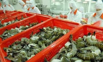 Tận dụng ưu đãi thuế quan để tăng xuất khẩu vào thị trường ASEAN