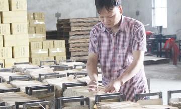 Đào tạo để giữ nghề, đưa hương nhang Phú Hải vươn ra thế giới