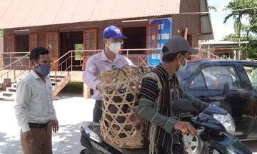 Diện mạo mới ở vùng tây Đà Nẵng (Bài 1): Tạo sinh kế cho hộ nghèo miền núi