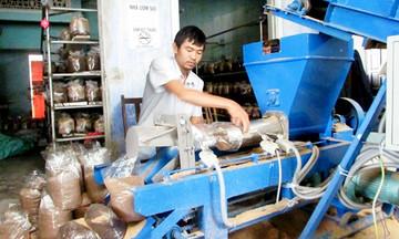 Dạy nghề để mở đường thoát nghèo cho lao động nông thôn Như Thanh