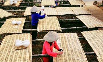 Yên Bái nâng chất lượng dạy nghề, tạo việc làm cho phụ nữ nông thôn