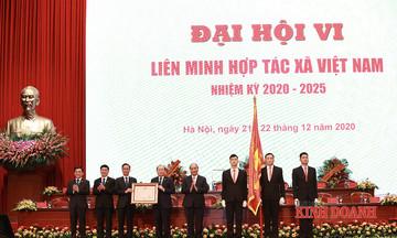 Thủ tướng phê duyệt điều lệ VCA: Nâng cao vị thế của tổ chức đại diện khu vực HTX