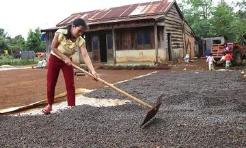 Giảm nghèo ở vùng dân tộc thiểu số tại Đăk Nông (Bài 1): Giúp phụ nữ vươn lên