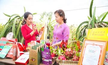 Bí quyết trồng thanh long sạch của HTX Hòa Lệ
