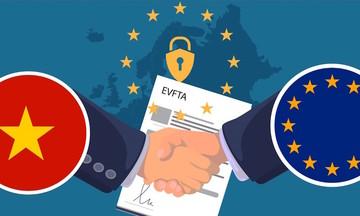 Chủ tịch EuroCham: Đối phó với COVID-19, cũng đừng quên EVFTA
