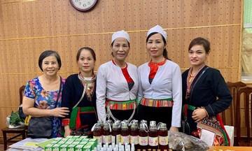 Phụ nữ dân tộc thiểu số tỉnh Hòa Bình làm kinh tế HTX (Bài 1): Phát triển cây thuốc nam quý hiếm của người Dao