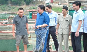 Hiệu quả từ nuôi trồng thủy sản ở Sơn La (Bài 1): Người truyền lửa cho thành viên HTX