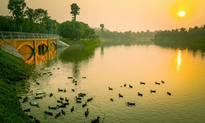 """<p class=""""Normal""""> Những ai từng đến khu đô thị Ecopark đều ấn tượng với hình ảnh bầy thiên nga, vịt trời tự do bơi lội giữa mặt hồ.</p>"""
