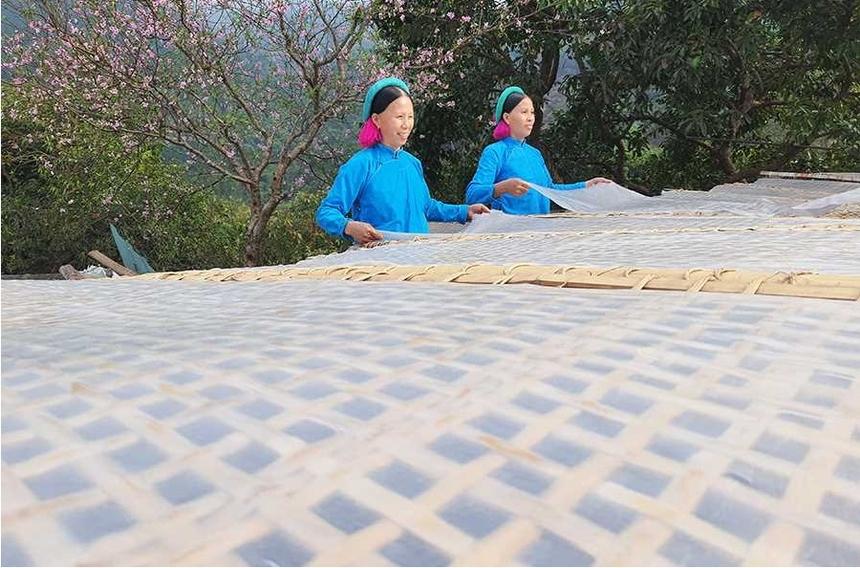 Mien-dong-Binh-Lieu-mua-Tet-1-1198-16294