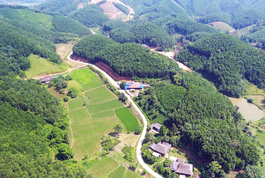 Dong-Hy-1a-5808-1629959393.jpg