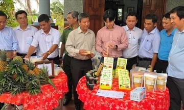 Phát triển các mô hình sản xuất nông nghiệp sạch ở huyện Gò Quao (Bài cuối): HTX góp phần xây dựng nông thôn mới