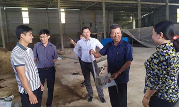 Phát triển các mô hình sản xuất nông nghiệp sạch ở huyện Gò Quao (Bài 1): Khởi nghiệp thành công từ mô hình HTX