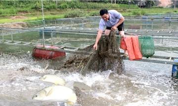 'Nâng chất' cán bộ quản lý HTX vùng dân tộc thiểu số tỉnh Lạng Sơn (Bài 2): Phát triển HTX bắt đầu từ công tác cán bộ