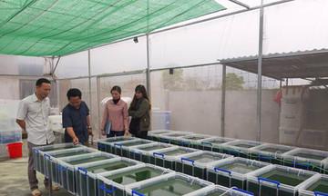 Ninh Bình hỗ trợ chuyển đổi số trong các HTX nông nghiệp