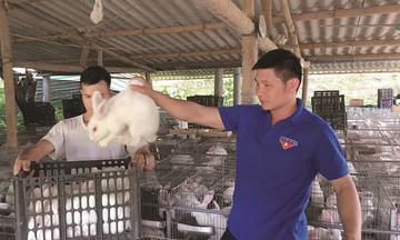 Giám đốc hợp tác xã khởi nghiệp từ nuôi thỏ