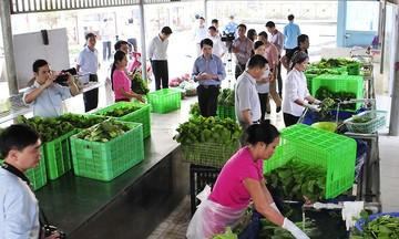Sản xuất xanh: Xu thế phát triển bền vững ở Vĩnh Phúc