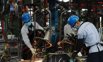 Việt Nam cần có lộ trình rõ ràng cho việc mở cửa nền kinh tế ngay từ bây giờ