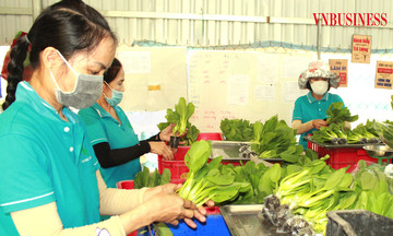 Chờ thêm chính sách hỗ trợ tiêu thụ nông sản giữa đại dịch