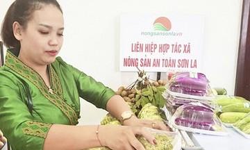 Tăng tính liên kết trong mô hình Liên hiệp HTX nông sản ở Sơn La