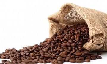 Giá cà phê trong nước tăng trung bình 200 đồng/kg