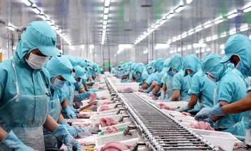Nguy cơ xuất khẩu thủy sản 'mất' 0,6 tỷ USD