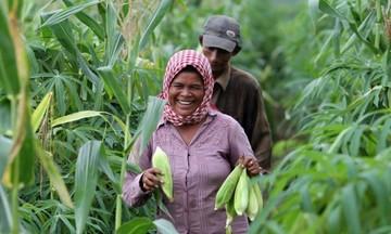 Mừng hay lo khi Việt Nam gia tăng nhập khẩu nông sản từ Campuchia?